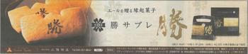20190704神奈川新聞_広告.jpg